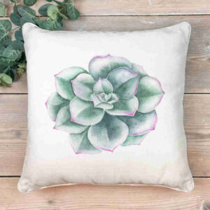 Succulent 1 Scatter Cushion